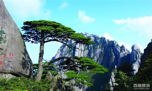 安徽黄山+宏村3日2晚跟团游|初游黄山必选线路·畅玩两大世界遗产地